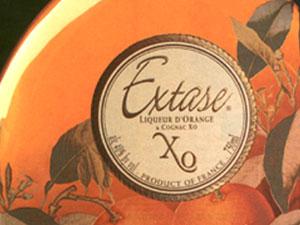 Extase XO